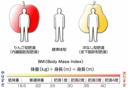 BMI指数計算表