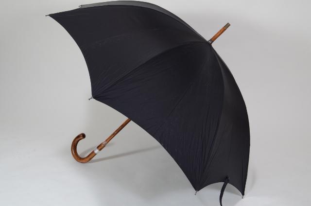 mens-umbrella-popularity-bland15-15