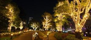 2016-8-tokyo-dete-060