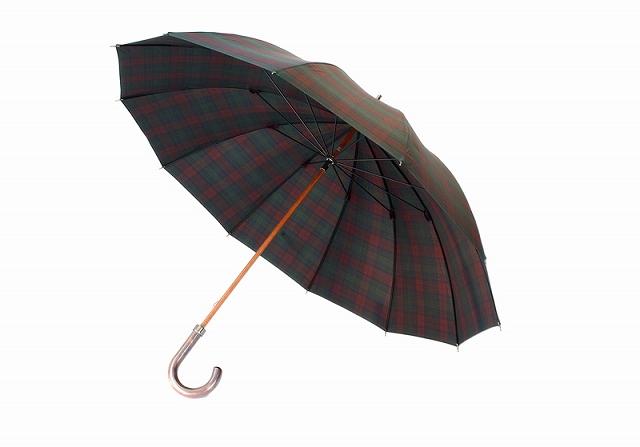 mens-umbrella-popularity-bland15-4