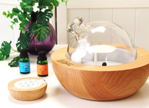 201608_aroma_be popular_diffuser_004