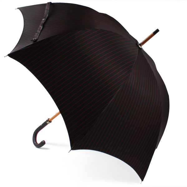 mens-umbrella-popularity-bland15-13