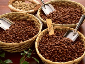 201609_coffee_bean_Recommended_severe_selection_016