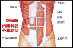 deep-muscle2