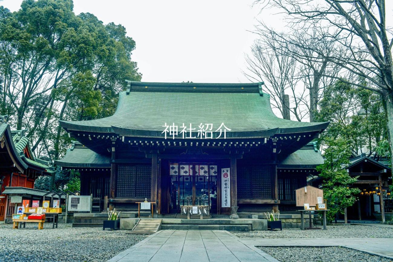 埼玉 川越氷川神社