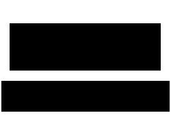 avirex ロゴ