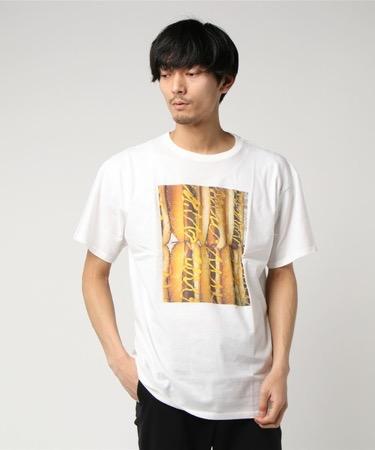 フォトTシャツ ホットドッグ