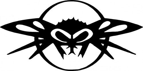 Black Flys(ブラックフライズ) ロゴ