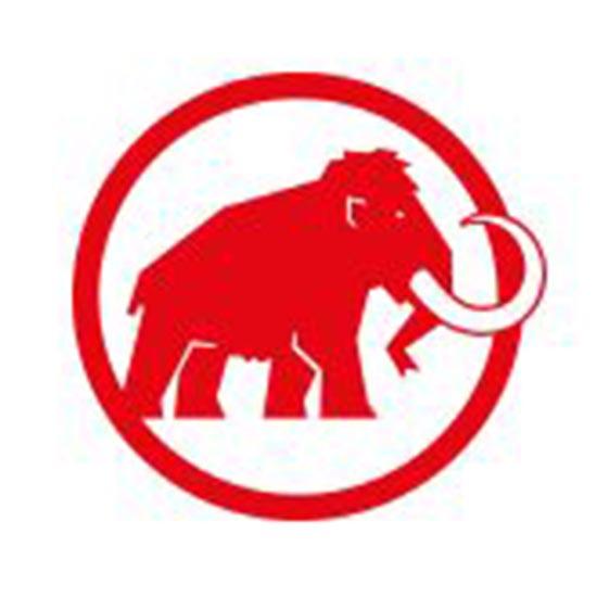 MAMMUT(マムート) ロゴ