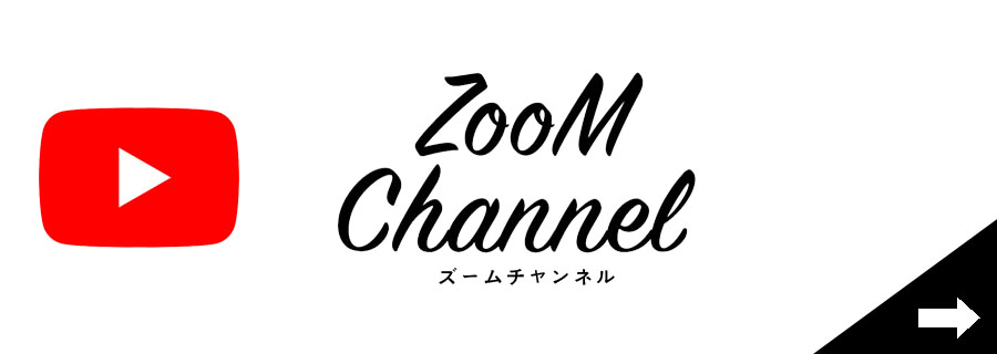 zoom channnel
