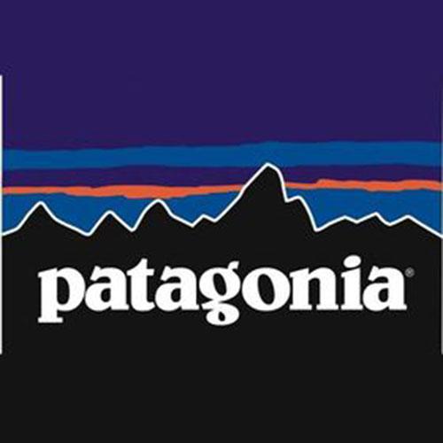 patagonia ロゴ