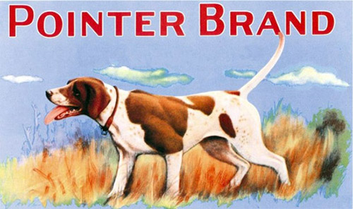 POINTER BRAND ロゴ