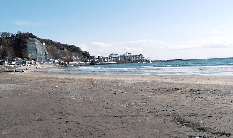 パインツリー 海