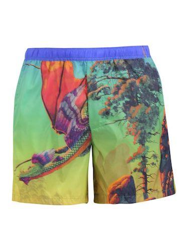 Swim Shorts Multi